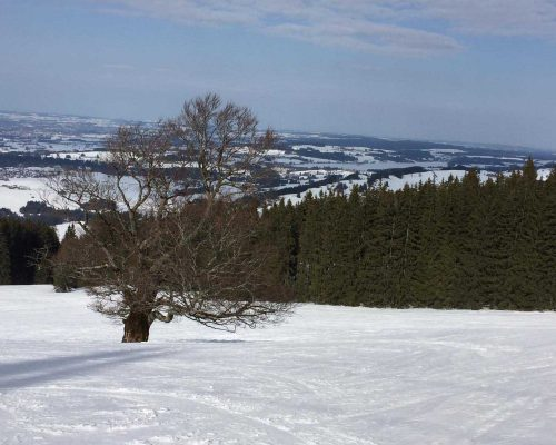 Breitenstein/Adelharz